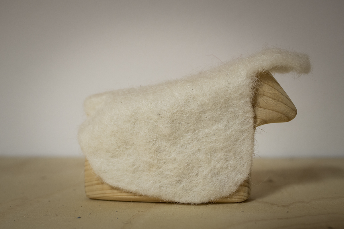 kind með ull / sheep with wool