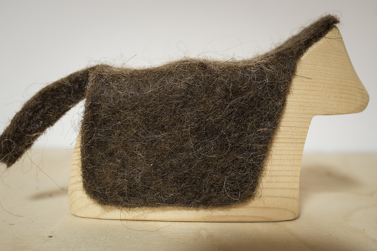 kýr með ull / cow with wool